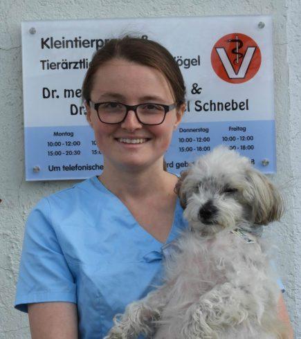 Luisa Siermann Tierarztpraxis für Vögel Dr. Schnebel und Dr. Zinke